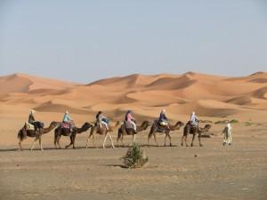 Marokko - Merzouga - Dromedarritt zu den Sanddünen - Foto: Reimar Kopp