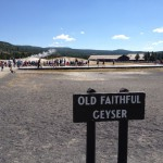 USA-Rundreise-Yellostone-Nationalpark-Old-Faithful-Heideker-Reisen-RH-6